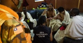 11 rescued, number of dead unknown after NIKO IVANKA sinks off the Coast of Liberia