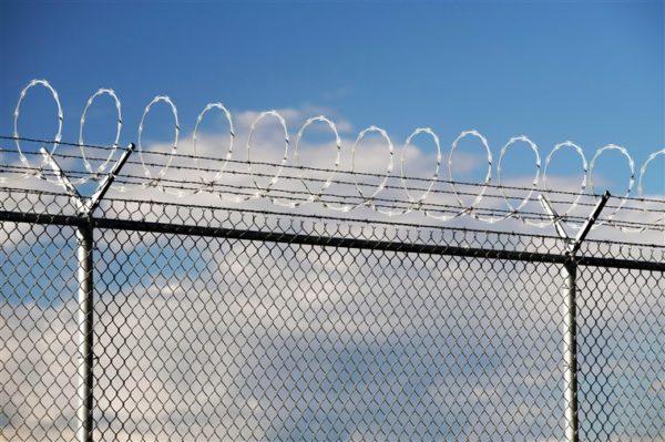 South Africa Building 40km Fence On Zimbabwe Border